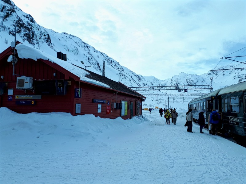 myrdal railway train station