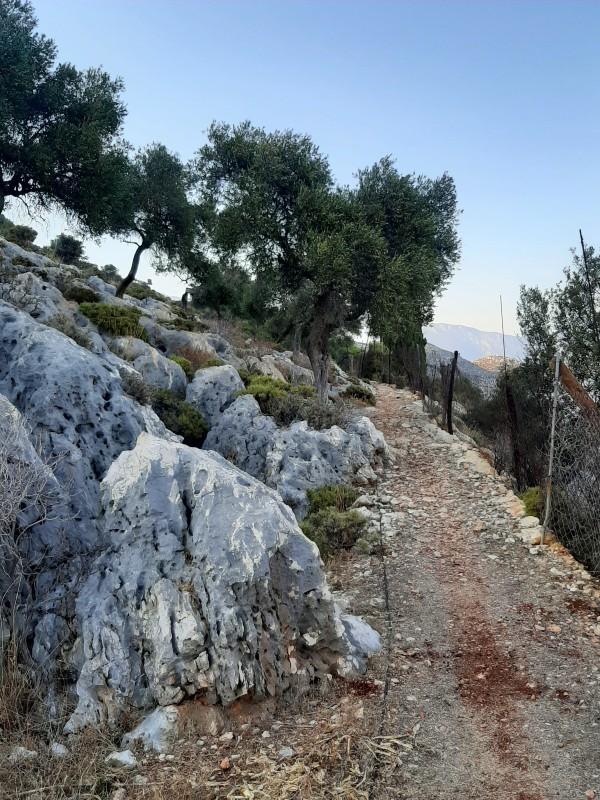 hiking path kastellorizo