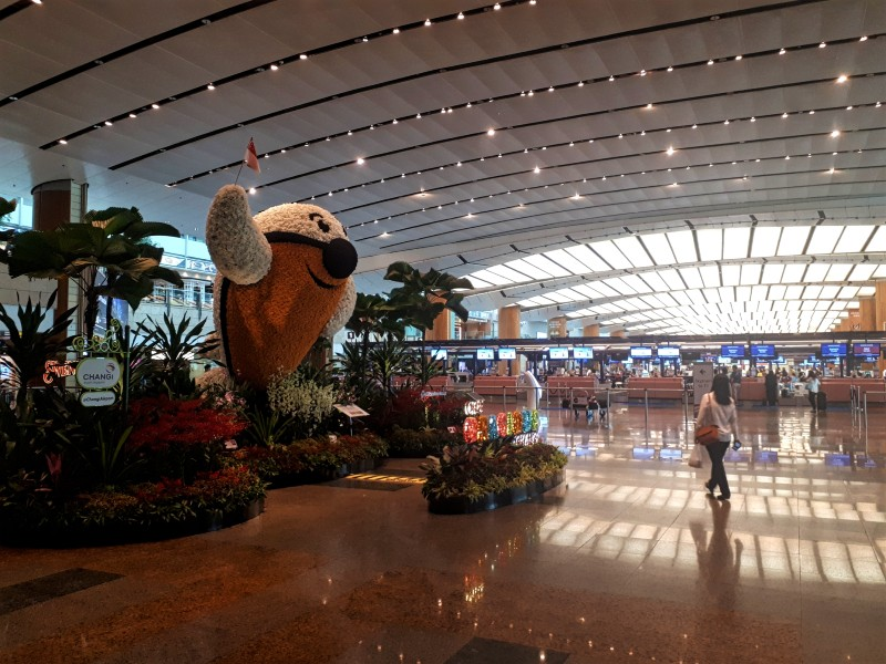 singapore changi airport check-in