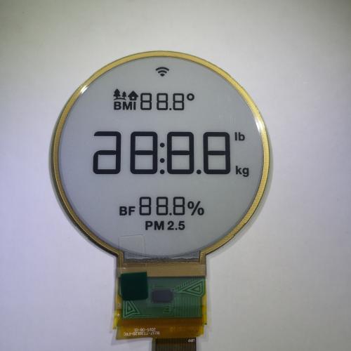 segmented e-paper display