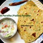 Mint-paratha for serving