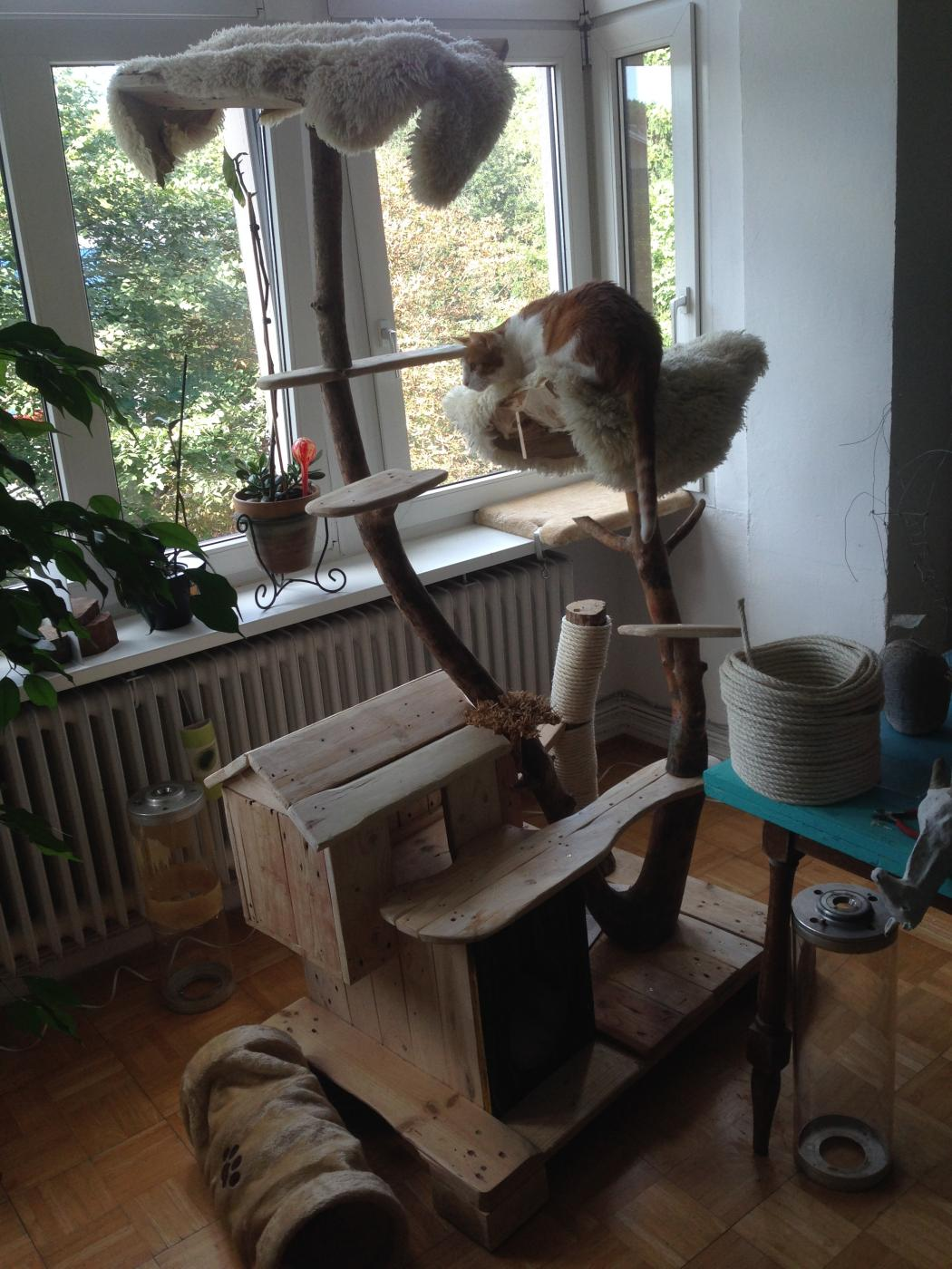 build sofa table ergonomic furniture cat scratching post and house from pallet wood, bark ...