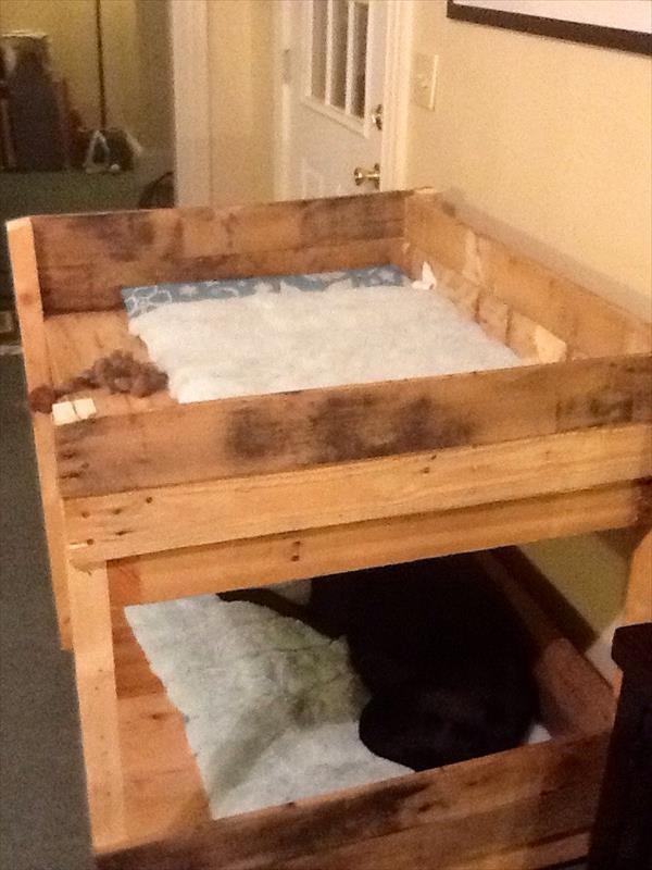 DIY Pet Bunk Bed  Plans to Build Dog Bed  Pallet