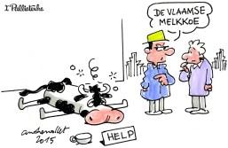 Afbeeldingsresultaat voor vlaming melkkoe cartoon