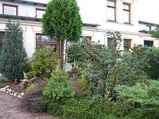 Nachbar Nachbarstreitigkeiten Bäume Sträucher Überhang Rechtsanwalt