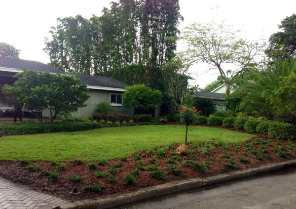 street-side bed palmer's garden