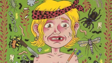 julie doucet's dirty plotte