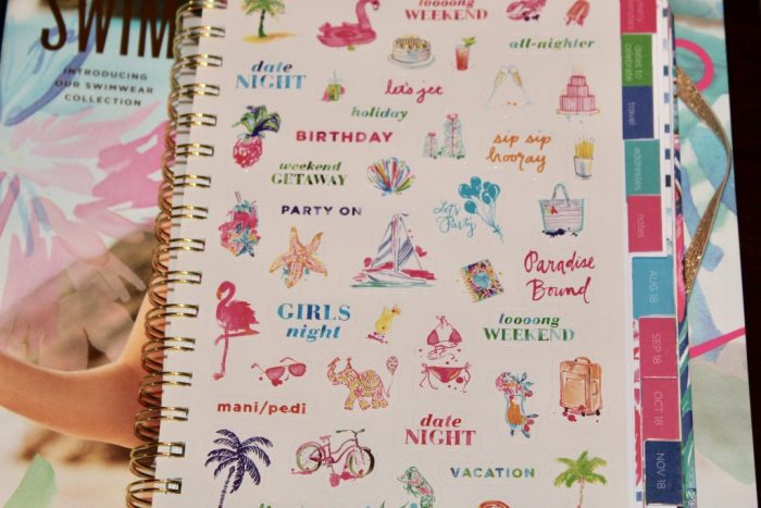 2018-2019 Lilly Planner