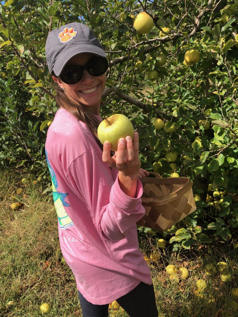 Apple-Picking in the North Carolina Mountains