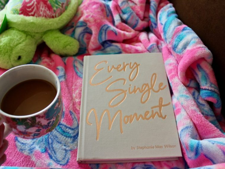 Every Single Moment Stephanie May Wilson