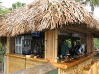 Backyard Tiki Bar Ideas | Mystical Designs and Tags