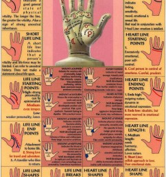 classic palm reading guide  [ 750 x 1125 Pixel ]