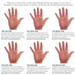 Palmistry Diagram Marriage Line Plano Convex Lens Ray Palm Reading Life Of In The 6 Major Lines