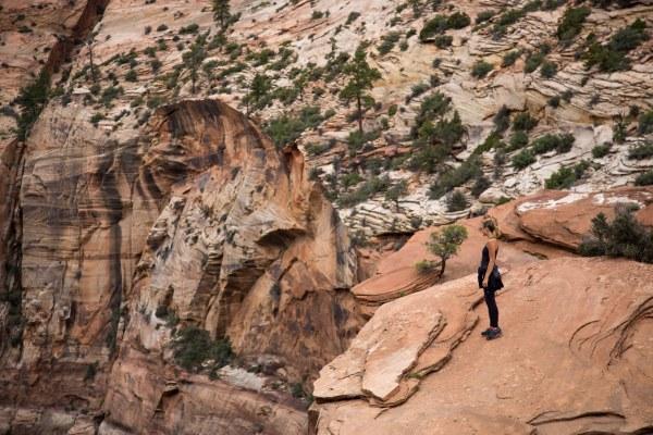 Zion Canyon Overlook-1