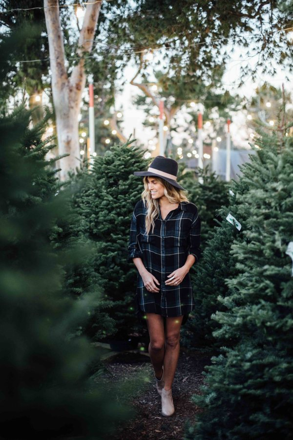 Gentle Fawn | Palms to Pines