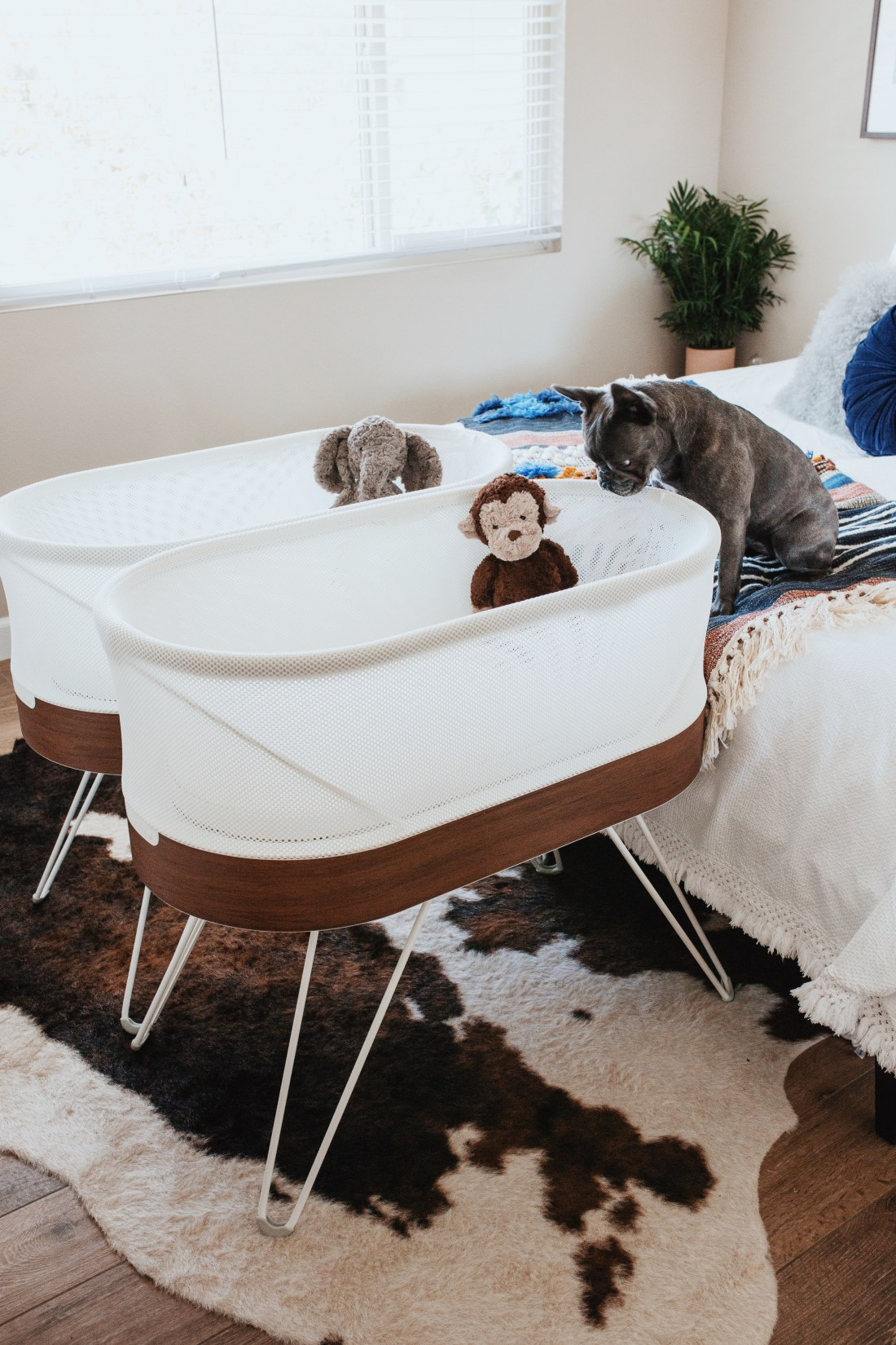 Choosing a Bassinet | Happiest Baby | SNOO