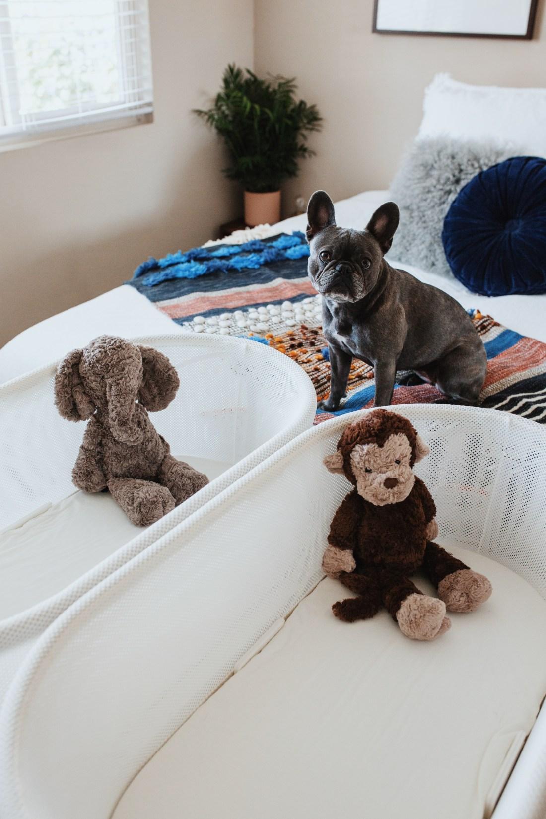 Choosing a Bassinet | Happiest Baby | SNOO