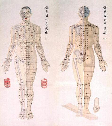 1-chinese-chart-of-acupuncture-points-everett