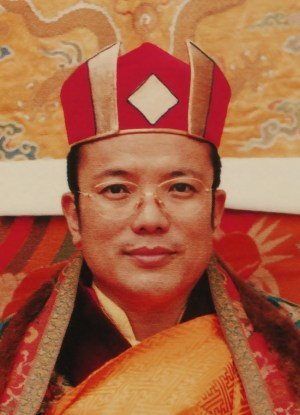 His Eminence 12th Chamgon Khenting Tai Situpa
