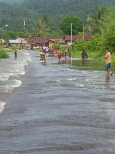 Banjir-Petasia3-225×300