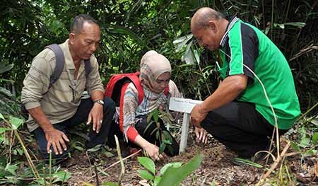 Penyuluh Kehutanan Se Sulteng Kunjungi Hutan Desa Lampo