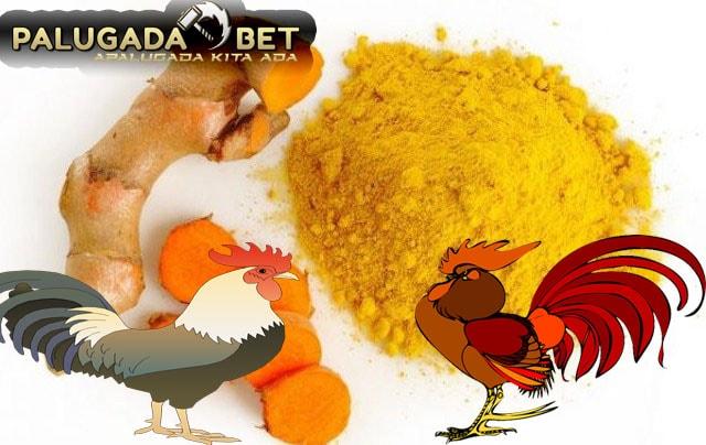 Khasiat Dan Kelebihan Kunyit Untuk Ayam Bangkok Aduan