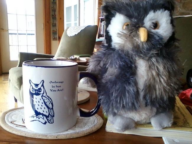 Mr. Scruffy with his mug