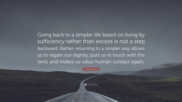 438490-yvon-chouinard-quote-going-back-to-a-simpler-life-based-on-living