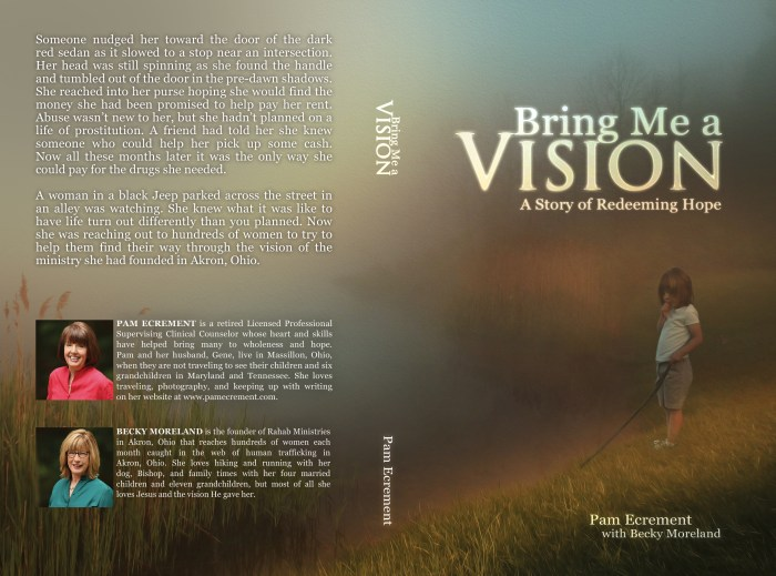 Bring Me a Vision_Cover_5.5x8.5