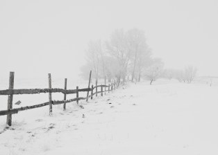 fence-snow-trees-65911