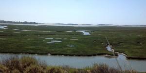 Moro Bay Estuary
