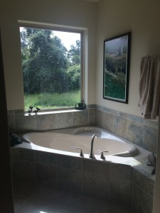 "I love this bathroom (tub side). Great view of ""yard"" in need of taming. One of these months."
