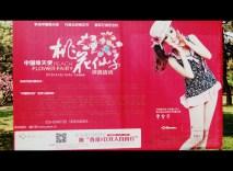 Peach Blossom promotion at the Beijing Botanic Gardens