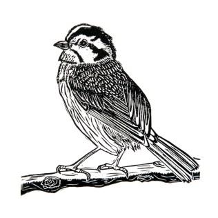 Bird on Branch (2015)