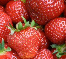 Vista Strawberry Festival