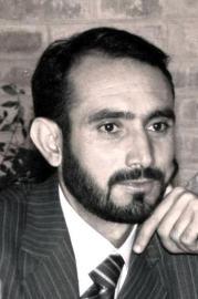 Sher Wali