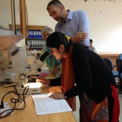 """Life of an earthworm"" research project at Karakuram University, Gilgit"