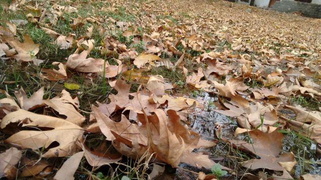 autumn-in-gilgit-city-3