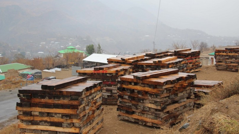 Chitral: Elected local body representatives assail KP government over timber policy