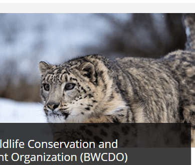 Baltistan Wildlife Conservation & Development Organization among 15 winners of Equator Prize 2017