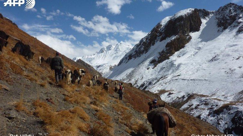 Barter trade lives on Asia's frosted, skeleton-littered peaks