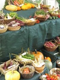 City Farms Festival at Capel Manor