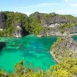 Natural Green Landscape Beach