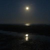 Moonset and Sunrise over Tillicum Beach