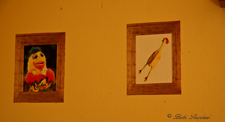 Miniature chicken paintings in a chicken coop