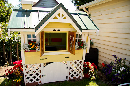 Yellow Chicken coop with metal roof
