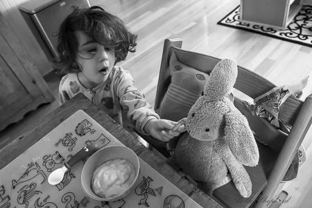 Stuffed animal dining companion