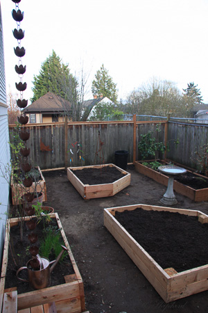 New planter boxes 4