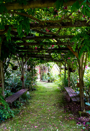 Bassetti's Gardens Crooked Arbor