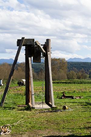 Trebuchet or pumpkin catapult